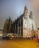 St. Stephen's Cathedral in night.  Vienna Royalty Free Stock Images