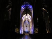 St. Stephens Cathedral  royaltyfri bild