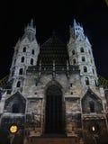 St. Stephens Kathedraal bij nacht - Wenen, Oostenrijk stock foto