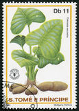 ST. THOMAS AND PRINCE ISLANDS - 1981: shows Colocasla esculenta, corms the root vegetables taro, series World Food Day. ST. THOMAS AND PRINCE ISLANDS - CIRCA Stock Image