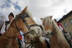 St Todor 's dag Het ras met paarden en van de paardentrekkracht karren met zwaar opent Todorov-dag het programma Stock Afbeeldingen