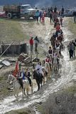 St Todor 's dag Het ras met paarden en van de paardentrekkracht karren met zwaar opent Todorov-dag het programma Royalty-vrije Stock Foto's