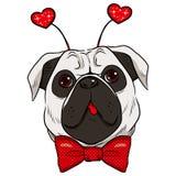 St Valentine Pug Dog Illustration de Vecteur