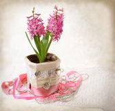 Retro style stylized composition with hyacinth Stock Photo