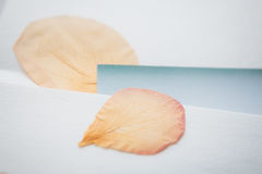 St. Valentine`s Day: the dried petals of roses and paper envelopes Stock Photography