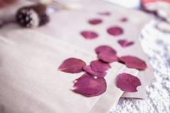 St.-Valentinsgruß ` s Tag: die getrockneten Blumenblätter von Rosen und von Papier schlagen ein Stockbild
