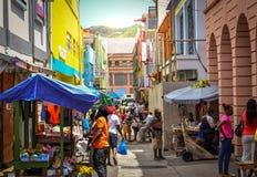 St. Vincent u. die Grenadinen-Insel Stockbild