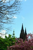St. Vit cathedral in area of Prague castle Stock Images