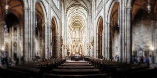St Vitus大教堂在Hradcany,最著名的教会 库存照片