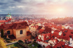 St Vitus布拉格大教堂和屋顶  库存图片