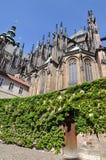 St Vitus Cathedral di Praga Immagine Stock Libera da Diritti