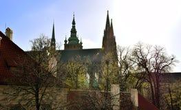 St Vitus Cathedral in Praag na Regen Stock Foto