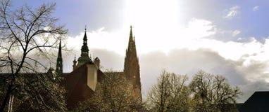 St Vitus Cathedral in Praag na Regen Royalty-vrije Stock Afbeeldingen