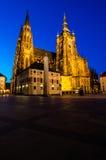 St Vitus Cathedral, Praga, repubblica Ceca Immagine Stock Libera da Diritti