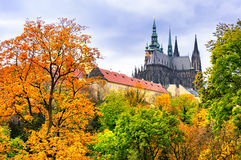 St. Vitus Cathedral in Prague. And a garden Royalty Free Stock Image