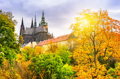 St. Vitus Cathedral in Prague. Sunset over the St. Vitus Cathedral in Prague royalty free stock images
