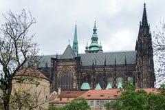 St Vitus katedra Zdjęcie Royalty Free