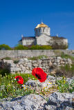 St. Vladimir Cathedral in Chersonesus, Crimea Royalty Free Stock Photography