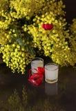 St Walentynki ` s dzień Bukiet mimozy fotografia stock