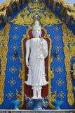 Stać Buddha wizerunek, Wat Rong Sua Dziesięć, Chiang Raja prowincja, Tajlandia Obraz Royalty Free