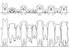 Stać psy przody i plecy granicy set ilustracja wektor