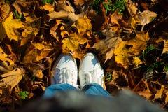 Stać w suchych jesień liściach Obrazy Stock