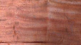 Stałego drewna tekstury naturalny tło Obrazy Royalty Free