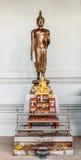 Stać Buddha Obraz Stock