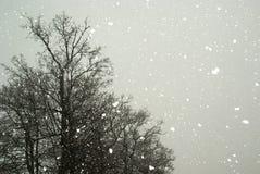 Sta nevicando Immagine Stock Libera da Diritti