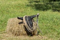 Stażowy lasso zdjęcie stock