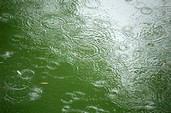 Sta piovendo Fotografia Stock Libera da Diritti