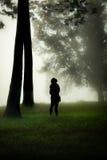 Stać w mglistym lesie Zdjęcia Royalty Free
