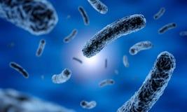 Staaf-vormige donkere bacteriën vector illustratie