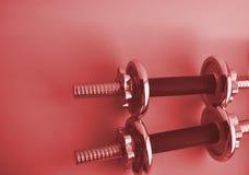 Staal 2 roze domoren met exemplaarruimte Sportuitrusting om bodybuilding Fitness, sportconcept royalty-vrije stock foto
