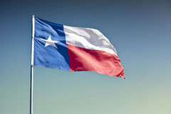 Staat Texas-Markierungsfahne Stockbild