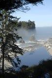 Staat Washingtonküste Stockbild