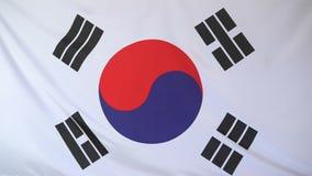Staatsflagge von Südkorea stock abbildung