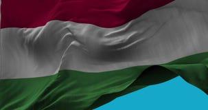 Staatsflagge von Ungarn wellenartig bewegend in die Windzeitlupe stock footage