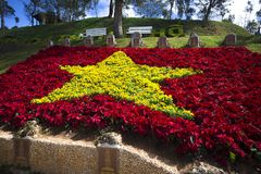 Staatsflagge von Vietnam machte von den roten und gelben Blumen Stockbild