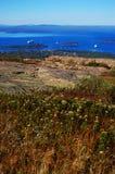 Stab-Hafen, Acadia-Nationalpark Lizenzfreies Stockbild