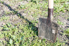 Stabbed shovel into the ground Stock Photography