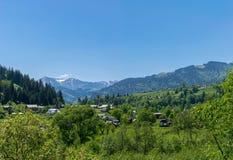 Stabilimento alpino in Carpathiants Fotografia Stock Libera da Diritti