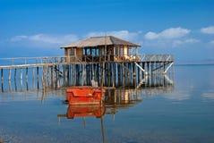Stabilimento di legno del lago del cottage Fotografie Stock Libere da Diritti