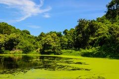 Stabilimento di trasformazione delle acque di rifiuto Fotografia Stock Libera da Diritti