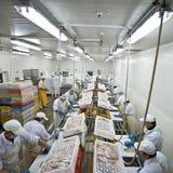 Stabilimento di trattamento elaborante del pesce Immagini Stock