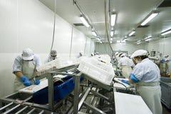 Stabilimento di trattamento elaborante del pesce Immagine Stock