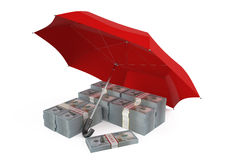 Stability and protection in financial, business  and insurance c. Oncept Stock Photography