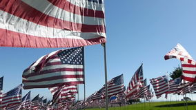 Stabilized Walkthrough Hundreds of American Flags (Part #1) stock video footage