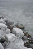 Stabilopods gelés en hiver Photos stock