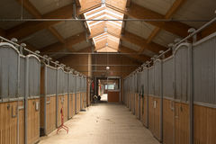 Stable. Place of care, raising and training of competition horses royalty free stock images